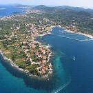 narina olive island