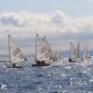 regata croatia